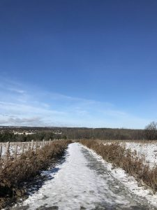 Rouge Valley Trail